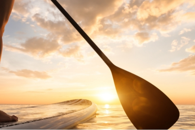 paddle companies